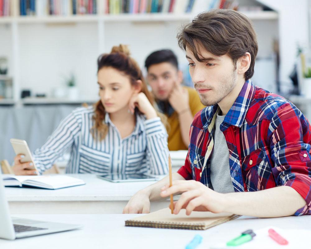 WordPress Development Course